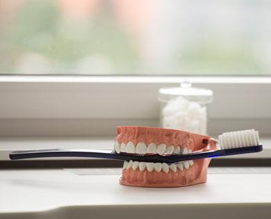 Zähne schützen durch Vorbeugung - mit professioneller Zahnreinigung.